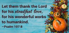 Say Grace: Thanksgiving Mealtime Blessings and Prayers
