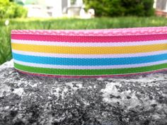 Caribbean Smoothie 1 Inch Width Dog Collar by WillyWoofs on Etsy, $18.00