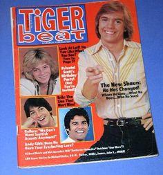 Tiger Beat Magazine posters!!!