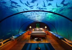 Underwater hotel room in the Maldives...AMAZING