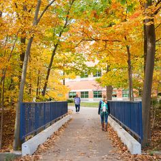 We can't wait until campus looks like this! #fall #gvsu