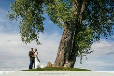 Susannah Storch Photography #highlandsmeadowsgolfcourse #highlandmeadowswedding #weddingportrait #fortcollinsweddingphotography #treeoflife