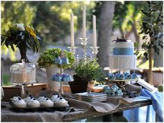 Love the blue & white here & the beautiful outdoor setting.