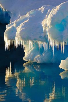 ✮ Glacier...the icicles are very reminicent of T-Rex teeth. Looks very much like a giant dinosaur.