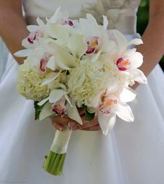 Send White Orchid and Calla Lily Bouquet in Wilmington, DE from Petals Flowers and Fine Gifts, the best florist in Wilmington. All flowers are hand delivered and same day delivery may be available. White Orchid Bouquet, Calla Lily Bouquet, Succulent Bouquet, Hand Bouquet, Calla Lillies, White Orchids, Lilies, Lilly Bouquet Wedding, Prom Bouquet