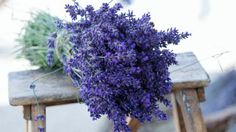Anti-aging herbs have been used as an ingredient for decades of beauty and homemade health remedies, everything from healing an injury to creating a natural anti-aging wrinkles treatment. Lavender Benefits, Bouquet, Health Remedies, Opi, Health Benefits, Anti Aging, Health And Beauty, Flowers