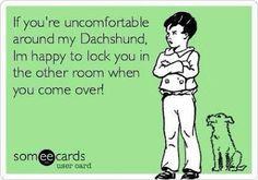 Pleas[e] and Carrots: Dachshund Crazy