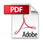 download this pdf button
