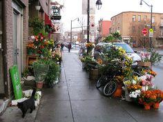 Le vendeur chinois de fleurs et de bric à brac sur Bernard. Sidewalk, Wellness, Canning, Plants, Summer, How To Make, Travel, D Day, Places