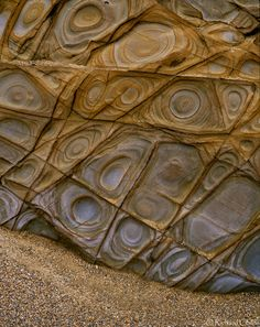 Fracture Control Liesegang Rings, Widemouth, Cornwall by Richard Childs Photography Rocks And Gems, Rocks And Minerals, Crystals Minerals, Patterns In Nature, Textures Patterns, Foto Nature, Formations Rocheuses, In Natura, Natural Forms