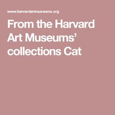 From the Harvard Art Museums' collections Cat