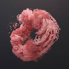 "Nadir (@n4dirp) on Instagram: ""Render+Wireframe #b3d #cyclesrender #houdini #procedural #abstract #coral #illustration #art…"""
