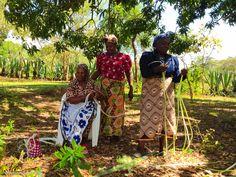Women of kenya village | The Planet D