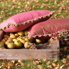 The bold silk claret and  silk fuchsia cushions create a bold statement on any sofa.