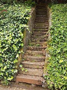 Steep old railroad tie steps in Belvedere, CA Steep Hillside Landscaping, Backyard Landscaping, Sloped Backyard, Backyard Ideas, Garden Ideas, Outdoor Steps, Outdoor Fun, Outdoor Decor, Garden Stairs