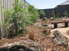 Landscaped ribbon driveway by natural bridges landscaping for Australian native garden design ideas