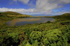 SIARAM :: Zonas Húmidas :: Lagoa do Caiado, Pico Island, Azores, Portugal
