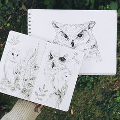 """Owl pen drawings in sketchbooks by Raahat Kaduji.  .  """"The Owl always takes her sleep during the day. Then after sundown, when the rosy light fades from the sky and the shadows rise slowly through the wood, out she comes ruffling and blinking from the old, hollow tree."""" - Aesop, The Owl and the Grasshopper.  .  More owls. I couldn't resist✨  .  .  .  .  .   #owl #barnowl #sketchbook #whimsicalwonderfulwild #livewild #livefolk  #vsco #moleskine  @raahatventures"""