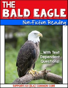 The Bald Eagle {Non-Fiction} Close Reading & Text Dependen Girl Scout Activities, Writing Activities, George Washington Facts, Science For Kids, Teaching Science, Kindergarten Social Studies, Text Dependent Questions, Common Core Ela, National Symbols