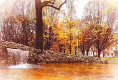 Buongiorno #Milano e buona domenica Foto di Sergey Bykov #milanodavedere Milano da Vedere