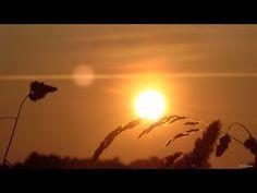 La chûte du Soleil ^^ The fall of the Sun (flute by Joseph Pepe Danza) Estas Tonne, Flute, Joseph, Ocean, Clouds, Sunset, Fall, Outdoor, Sun
