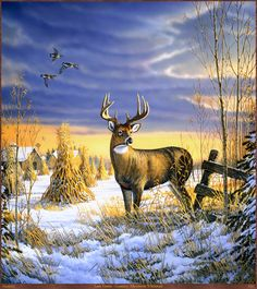 """http://animal.memozee.com/Arch07/1307710091.jpg """"Country Afternoon Whitetail"""" by Sam Timm"""