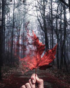 #theuniversalart: Dreamlike Photo Manipulations by Michael Thor #photography #theuniversalart #dreamlike #surreal #instaart