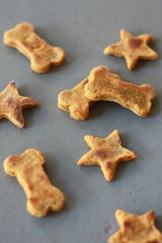 Vegan, grain free dog treats. Perfect for dogs with food sensitivities or allergies!