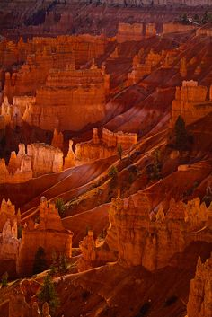 Bryce Canyon Amphitheater, Utah