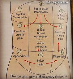 Quadrants of Abdomen and associated disorders. Pic from Shortcourse Of Surgery, Love & Bailey.