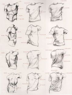 Oberkörper zeichnen - mit und ohne T-Shirt Drapery Drawing, Fabric Drawing, Shirt Drawing, Body Drawing, Drawing Proportions, Anatomy Sketches, Body Sketches, Art Sketches, Art Tutorial