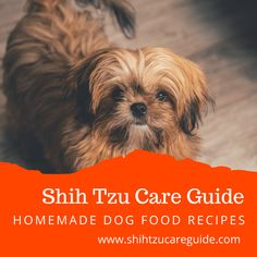 In this board you will find Fruits and vegetables for shih tzu and Homemade frozen dog treats. Frozen Dog Treats, Homemade Dog Food, Fruits And Vegetables, Shih Tzu, Dog Food Recipes, Board, Dogs, Animals, Fruits And Veggies