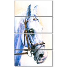 DesignArt 'Blue Horse with Bridle' 4 Piece Graphic Art on Wrapped Canvas Set