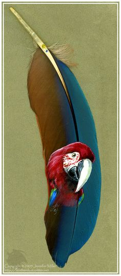 illustrated feather   Lifelike Birds And Animals Illustrated On Feathers - DesignTAXI.com