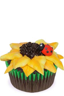 Sunflower and Ladybug Cupcakes Recipe | Reynolds Baking Cupssunflower cupcake