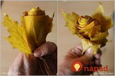 creative-ideas-diy-beautiful-maple-leaf-rose-5