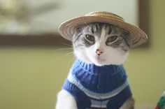 The sweater is cute, but how about that hat!