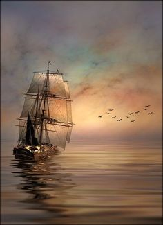 Sail with me.....NICE PIC....LOVE THIS