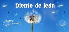 Blog de lengua y literatura. 4º ESO y Bachiller