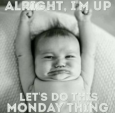 is your Monday going? Monday Morning Humor, Monday Humor Quotes, Monday Motivation Quotes, Tuesday Humor, Morning Motivation, Work Quotes, Good Morning Quotes, Funny Monday, Workout Motivation