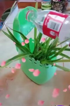 Creative ideas and diy with plastic bottles recycling. Creative ideas and diy with plastic bottles recycling. Kids Crafts, Diy Home Crafts, Craft Projects, Projects To Try, Plastic Bottle Crafts, Recycle Plastic Bottles, Plastik Recycling, Diy Para A Casa, Recycled Bottles