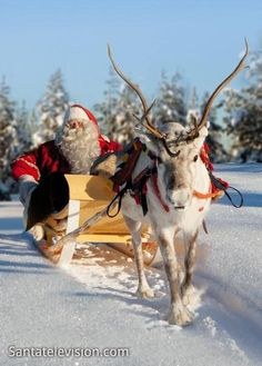 Santatelevision: Official Internet TV with videos about Santa Claus / Father Christmas, reindeer and Lapland in Finland, Santa Claus' home in Rovaniemi. Santa Clause video center in Finnish Lapland Christmas Scenes, Noel Christmas, Father Christmas, Winter Christmas, Vintage Christmas, Xmas, Primitive Christmas, Country Christmas, Lappland