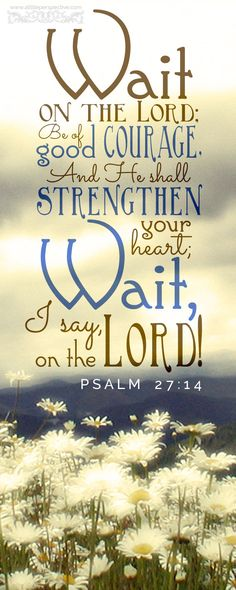 Wait on the Lord, be of good courage, and He shall strengthen your heart; Wait, I say, on the Lord. Psa 27:14 <3 10-14-14 Scripture Pictures, Bible Verses Quotes, Bible Scriptures, Scriptures On Strength, Bible Verses About Prayer, Psalms Verses, Psalms Quotes, Esv Bible, Prayer Quotes