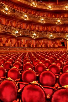 Teatro Colon in Buenos Aires, Argentina Everton, Wonderful Places, Beautiful Places, Argentina Travel, Travel Memories, Shows, Concert Hall, Shades Of Red, My Favorite Color