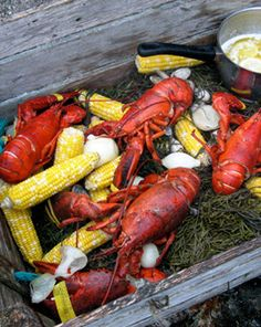 For the best lobster experience on earth, you gotta try a traditional lobster boil in Stonington, #Maine.