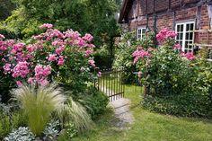 0_Faszinierende_Frauen_und_Gaerten_Callwey_105-1800x1200 Фото дач и садовых товариществ Германии.
