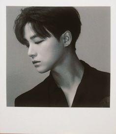 ikon-official: [MERCH] iKON KOLORFUL Photo Set...
