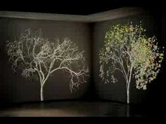 Jennifer Steinkamp, Dervish, 2004, 2005, video projectors that illuminate animated trees.