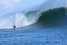 Surf Report June 18, 2015 G-Land Joyos Surf Camp Indonesia surf :7-8 ft wind: OFFSHORE,SUNNY Next trip: june 19, 22,25 2015 by Fast boat Photo by: Harry Pieters & Will Souw