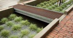 The FocalPoint Bioretention System. Photo credit: Design Workshop